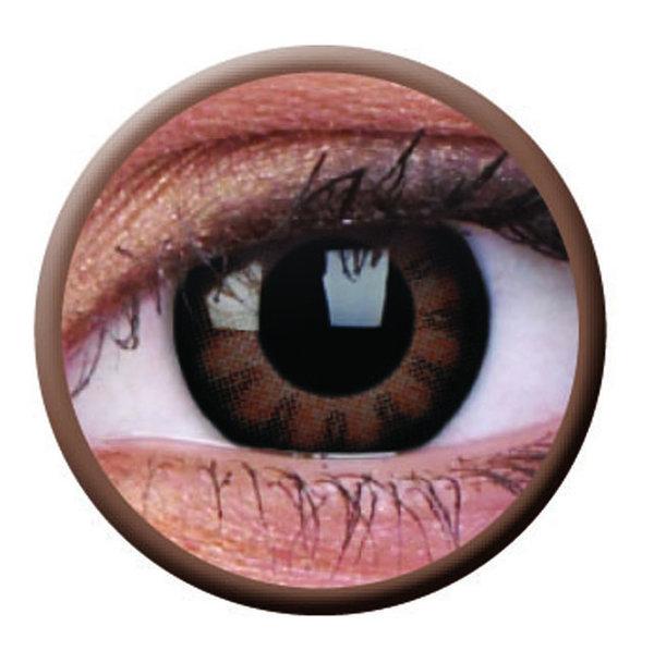 ColourVue Big Eyes - Sexy Brown (2 šošovky trojmesačné) - nedioptrické