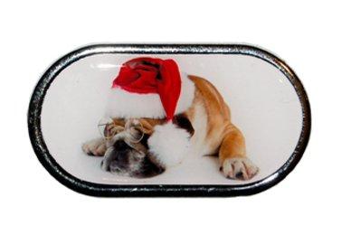 Púzdro so zrkadielkom Vianočný motív - Pes v okuliaroch