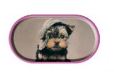 Púzdro so zrkadielkom Psi - Šteňa v čiapke