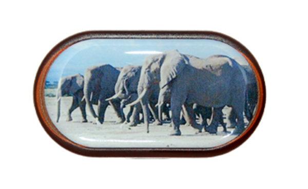 Púzdro so zrkadielkom Divoká zvieratá - Slon