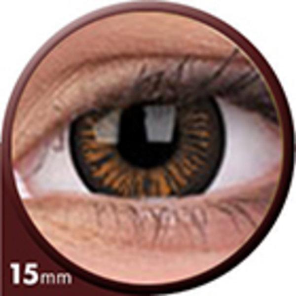 Phantasee Big Eyes - Charming Brown (2 šošovky trojmesačné) - dioptrické -1,00 exp. 07/21