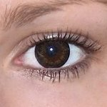 Gorgeous grey v detailu na původní barvě očí hnědé