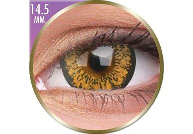 Phantasee Big Eyes - Baby Brown (2 šošovky mesačné) - nedioptrické - dopredaj