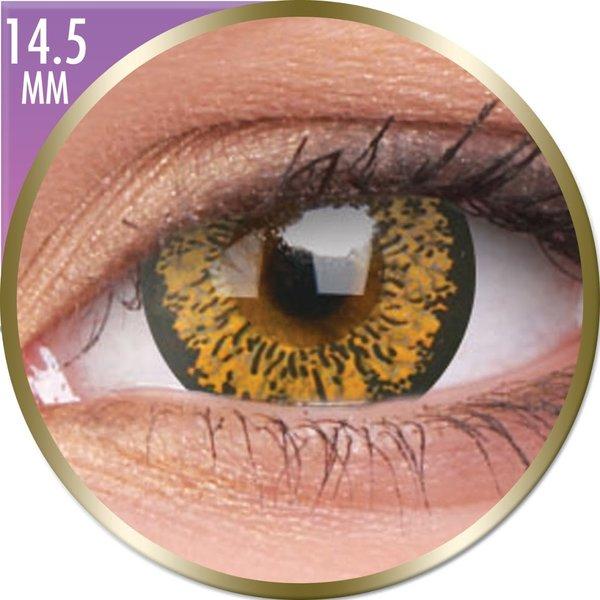 Phantasee Big Eyes - Baby Brown (2 šošovky mesačné) - nedioptrické - dopredaj 07/2020