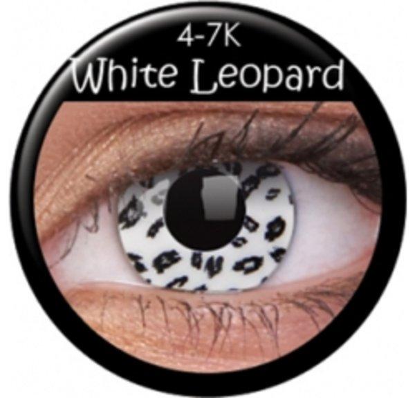 ColourVue Crazy šošovky - White Leopard (2 ks trojmesačné) - nedioptrické exp.05/2018