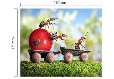 Handričku na okuliare z mikrovlákna - mravec