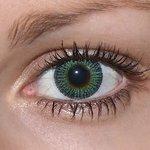 Yellow green v detailu na původní barvě očí hnědé
